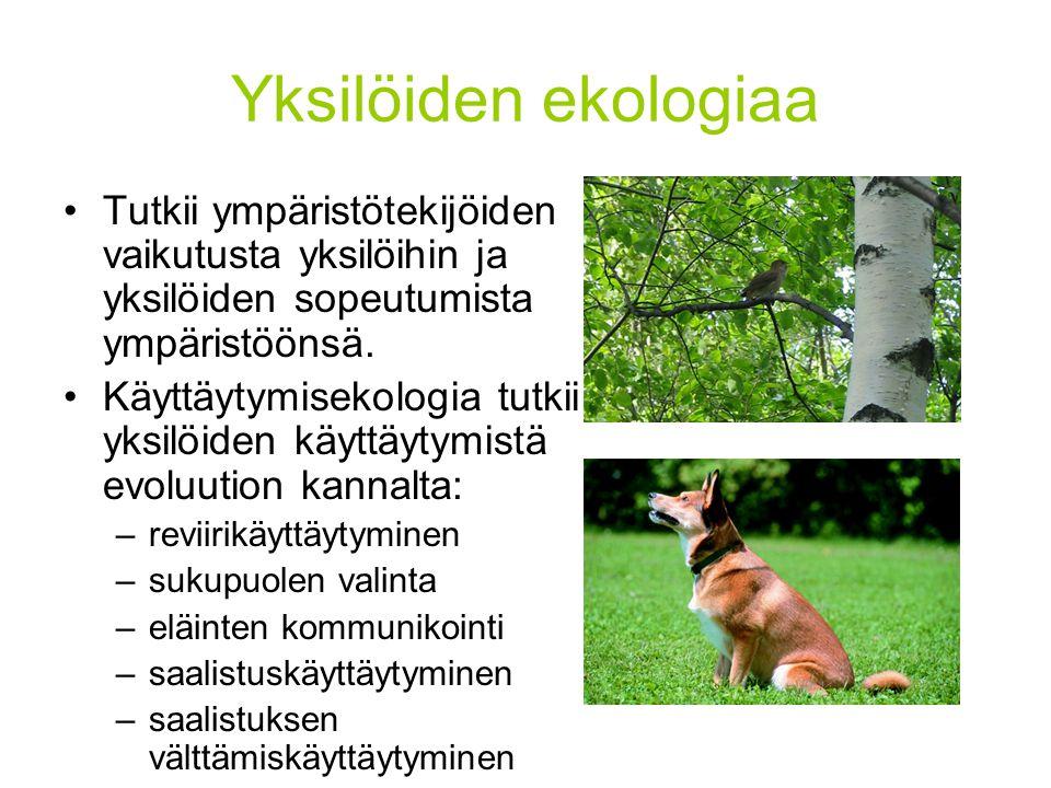 Yksilöiden ekologiaa Tutkii ympäristötekijöiden vaikutusta yksilöihin ja yksilöiden sopeutumista ympäristöönsä.