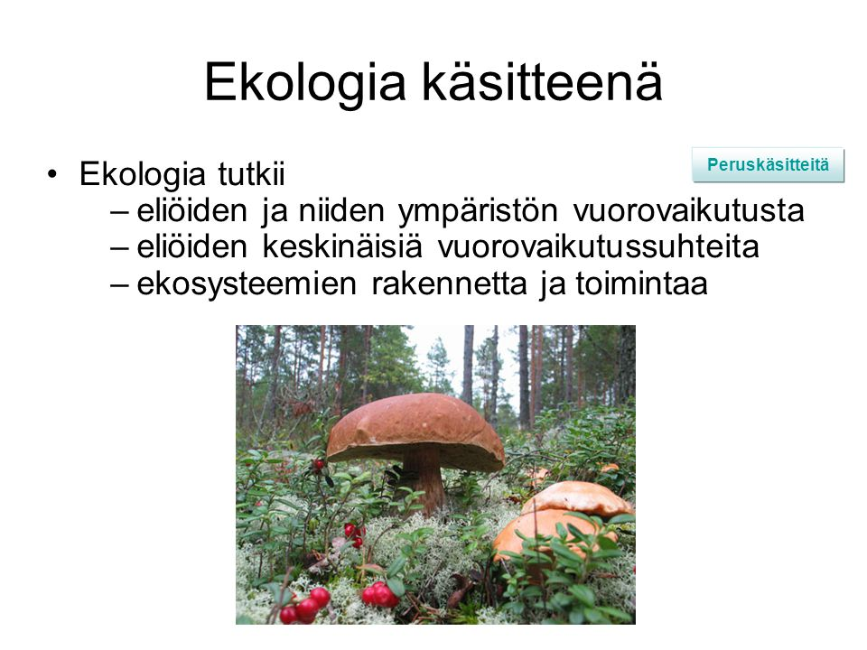 Ekologia käsitteenä Ekologia tutkii