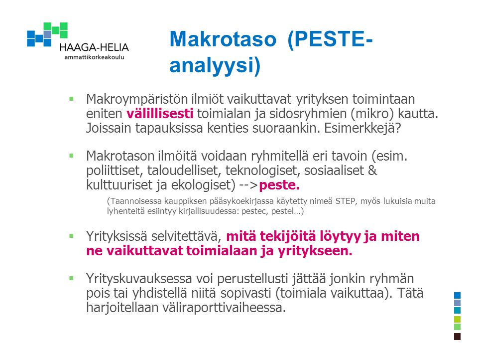 Makrotaso (PESTE-analyysi)