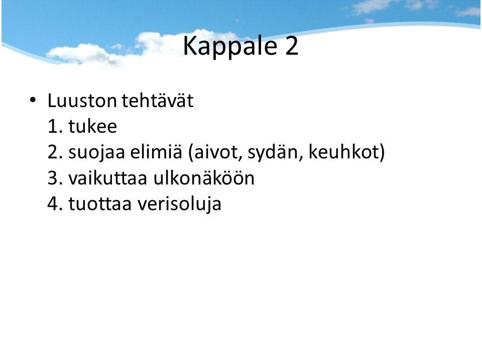 Kappale 2