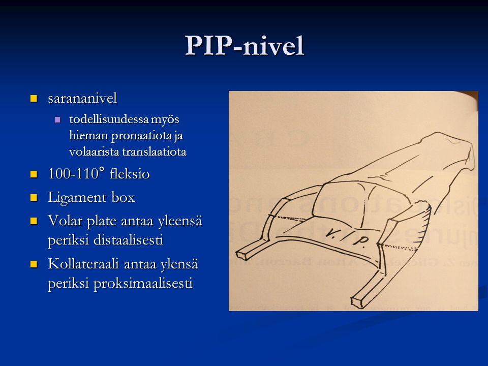 PIP-nivel sarananivel 100-110° fleksio Ligament box