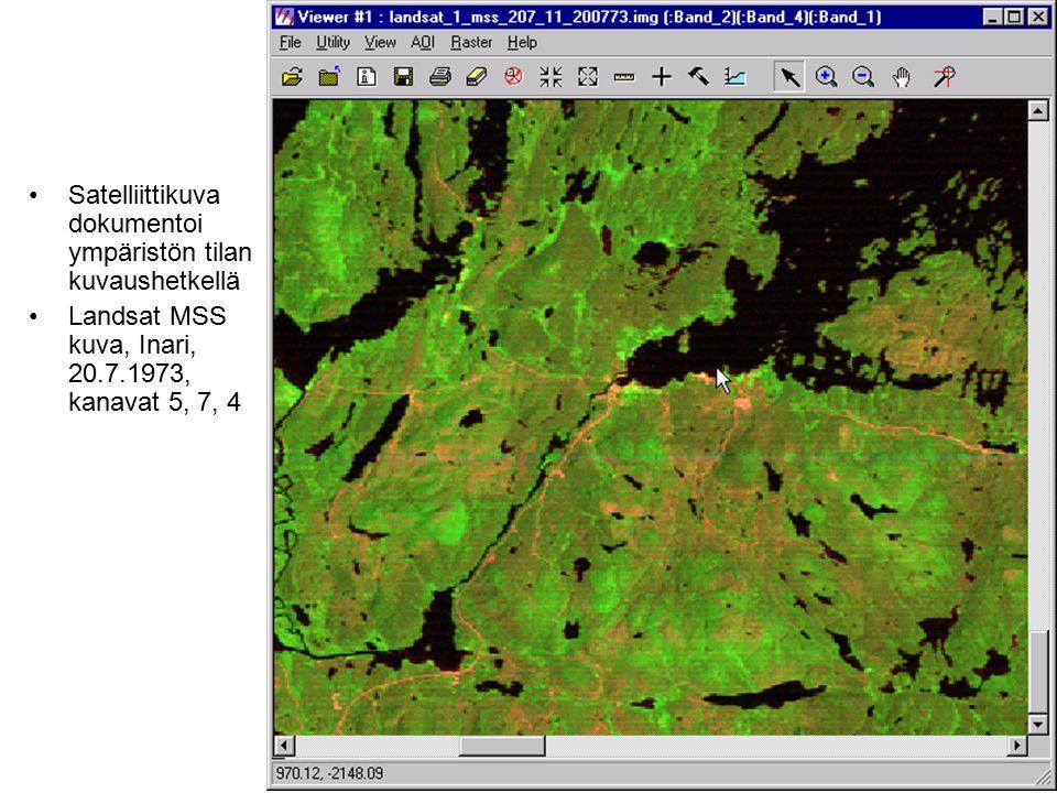 Satelliittikuva dokumentoi ympäristön tilan kuvaushetkellä