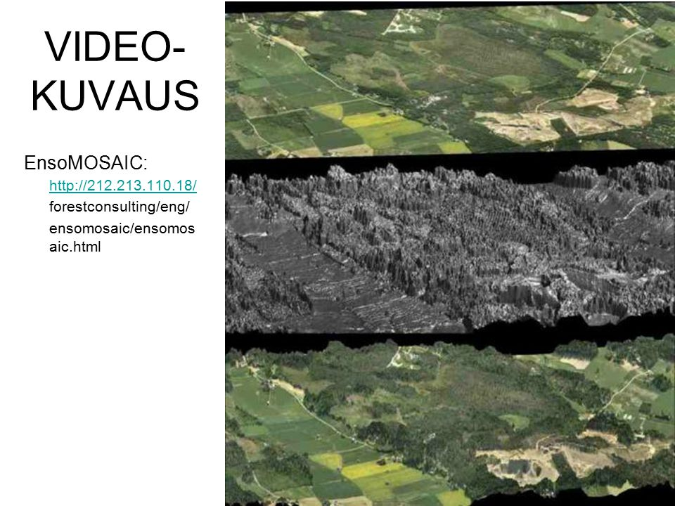 VIDEO- KUVAUS EnsoMOSAIC: http://212.213.110.18/ forestconsulting/eng/