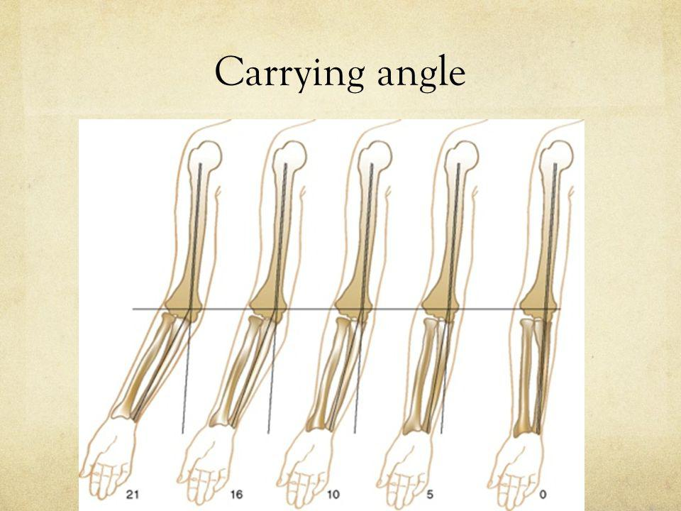 Carrying angle