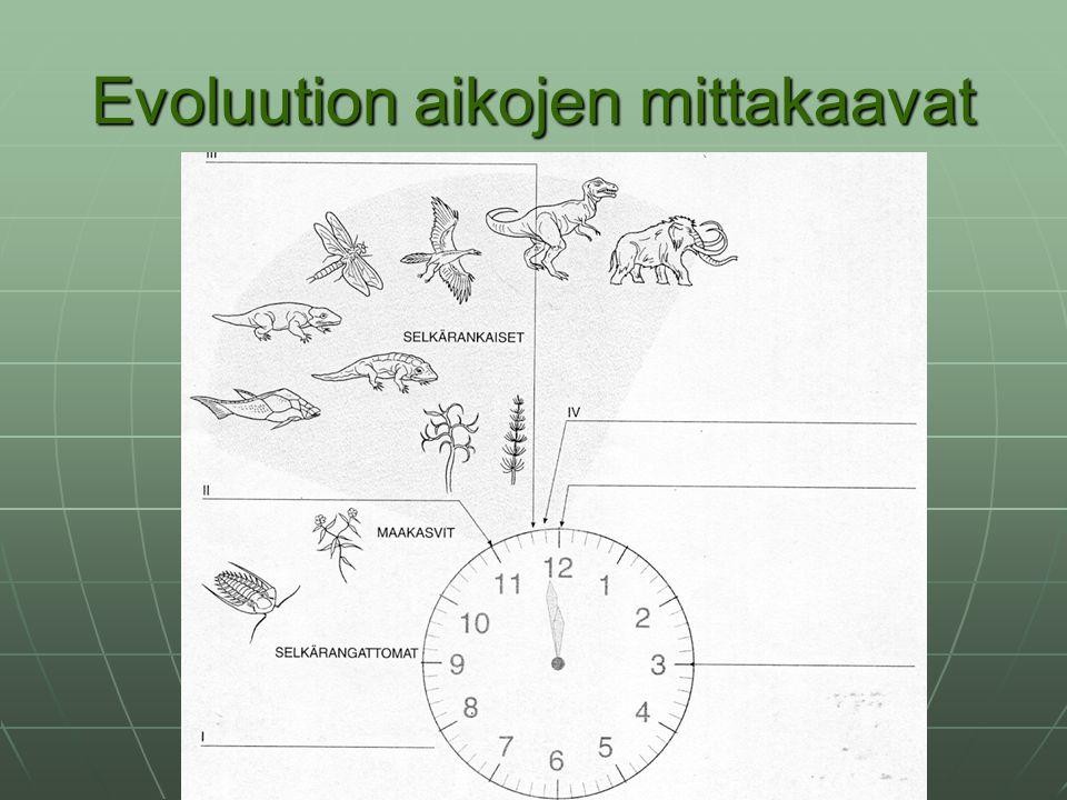Evoluution aikojen mittakaavat