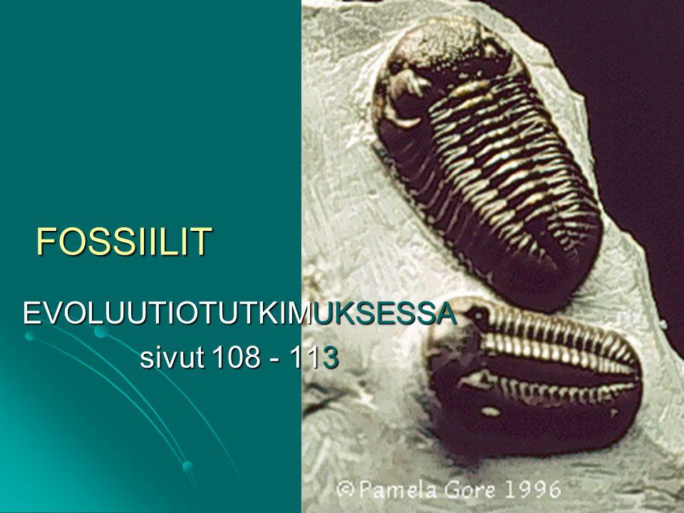 EVOLUUTIOTUTKIMUKSESSA sivut 108 - 113