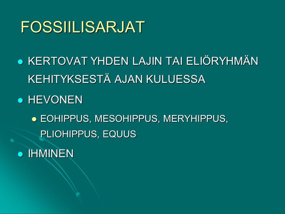FOSSIILISARJAT KERTOVAT YHDEN LAJIN TAI ELIÖRYHMÄN KEHITYKSESTÄ AJAN KULUESSA. HEVONEN. EOHIPPUS, MESOHIPPUS, MERYHIPPUS, PLIOHIPPUS, EQUUS.