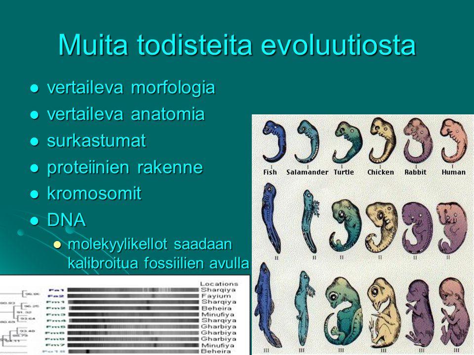 Muita todisteita evoluutiosta