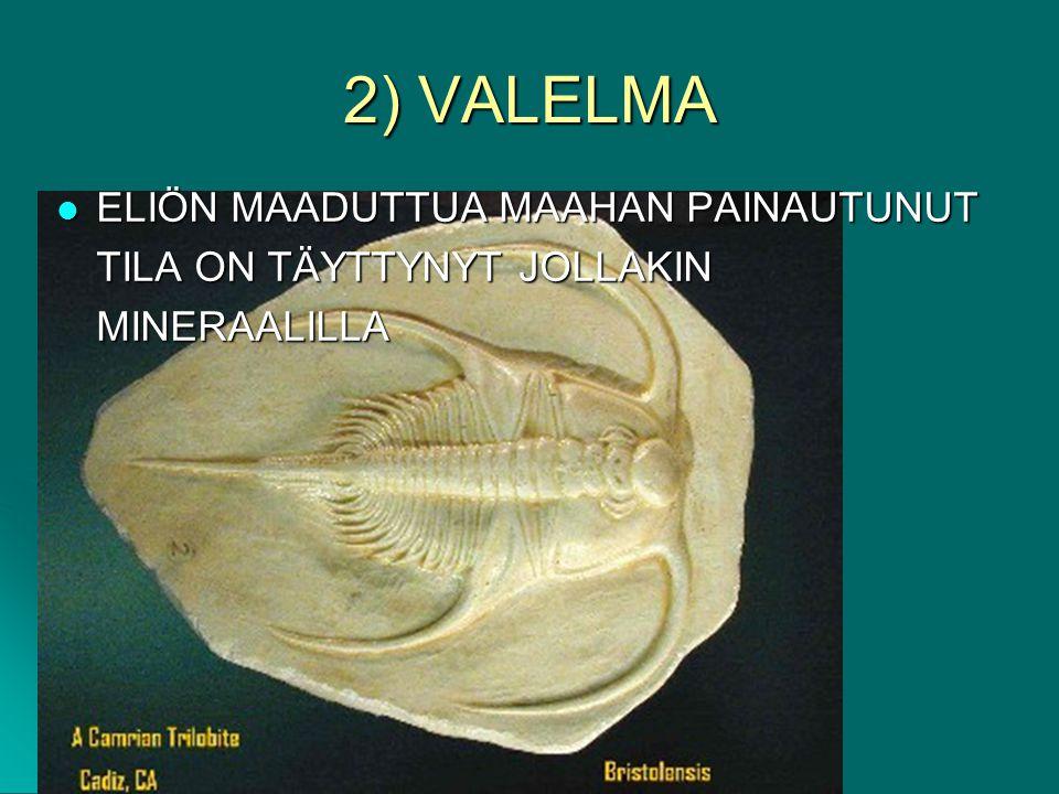 2) VALELMA ELIÖN MAADUTTUA MAAHAN PAINAUTUNUT TILA ON TÄYTTYNYT JOLLAKIN MINERAALILLA