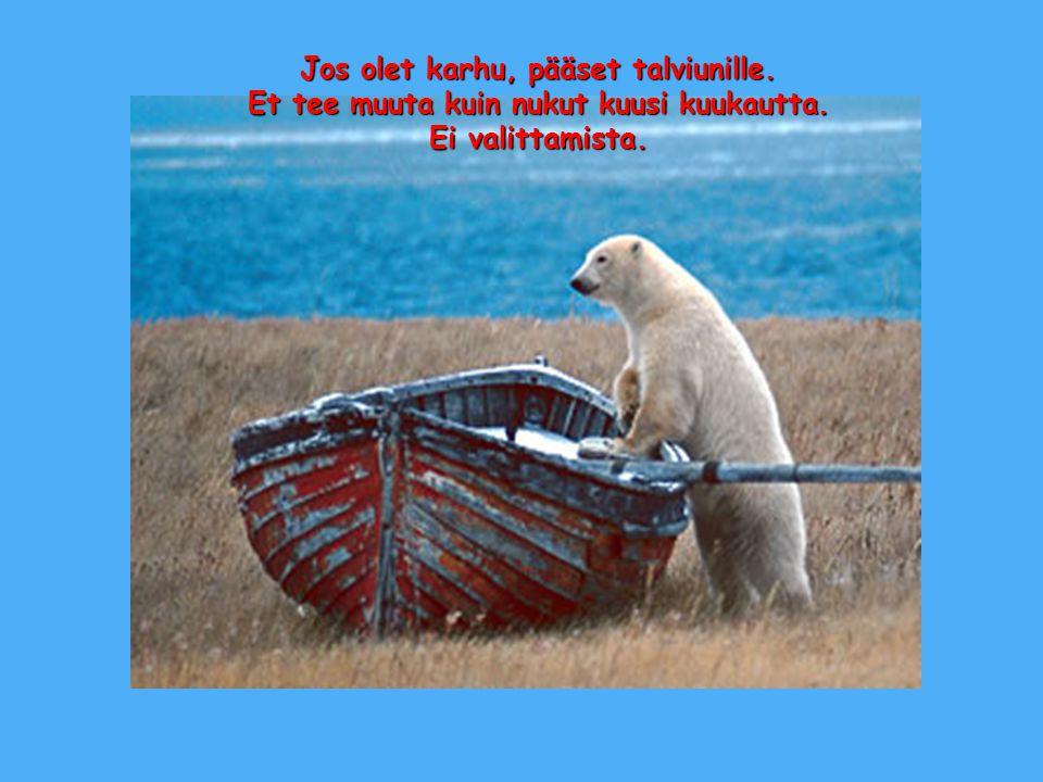 Jos olet karhu, pääset talviunille