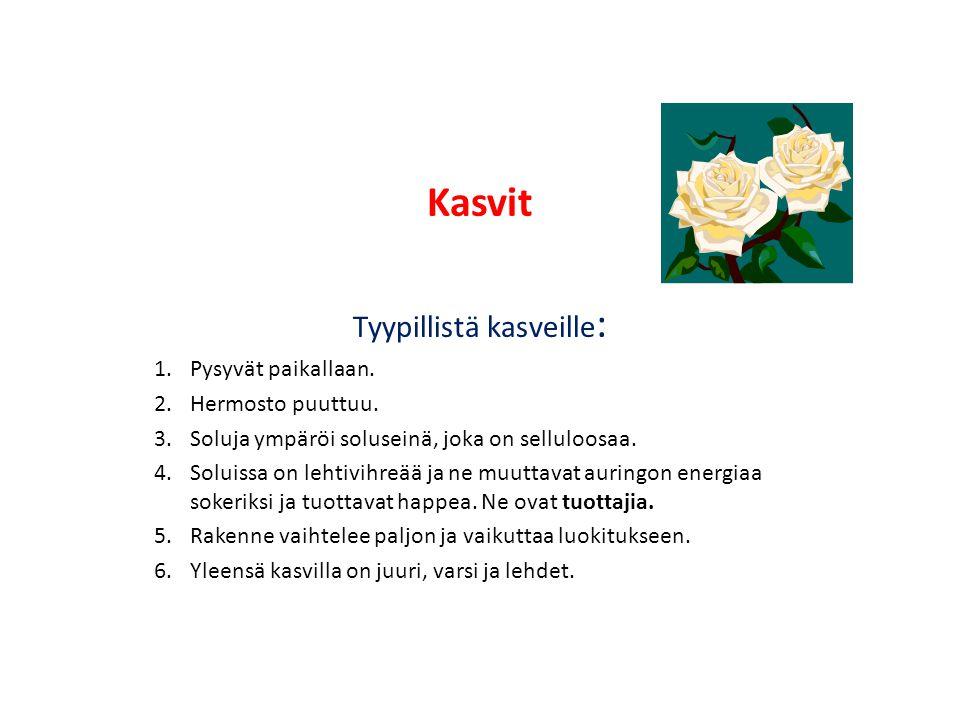 Tyypillistä kasveille: