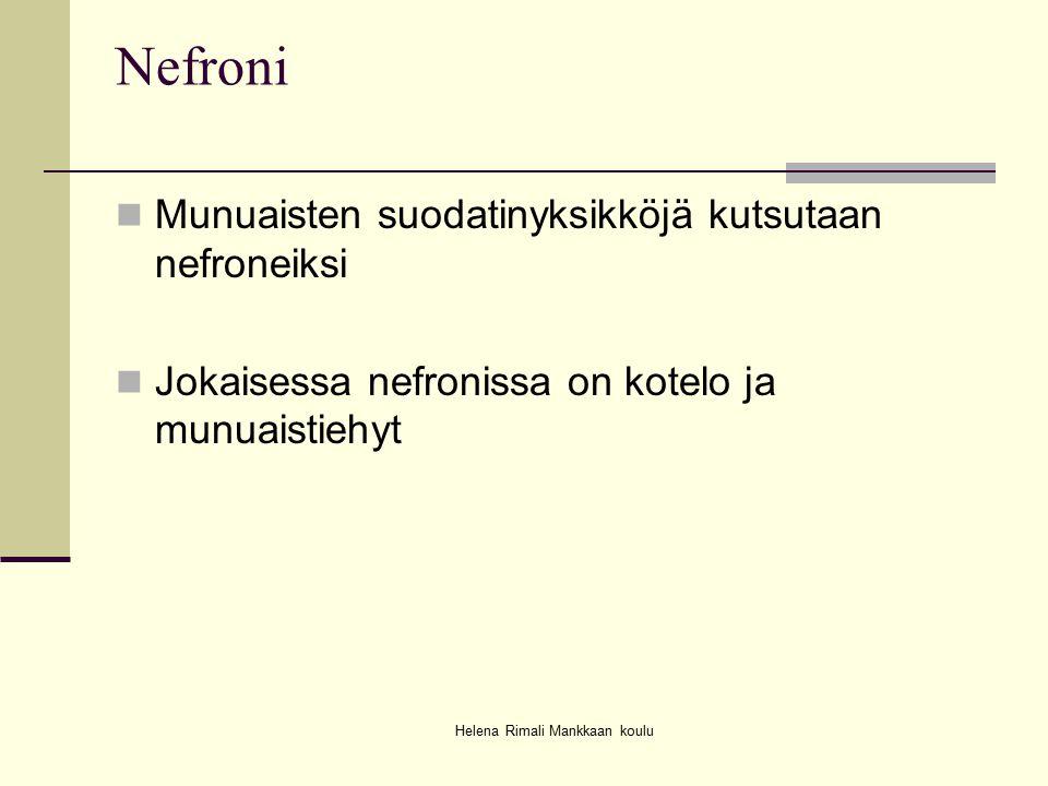 Helena Rimali Mankkaan koulu