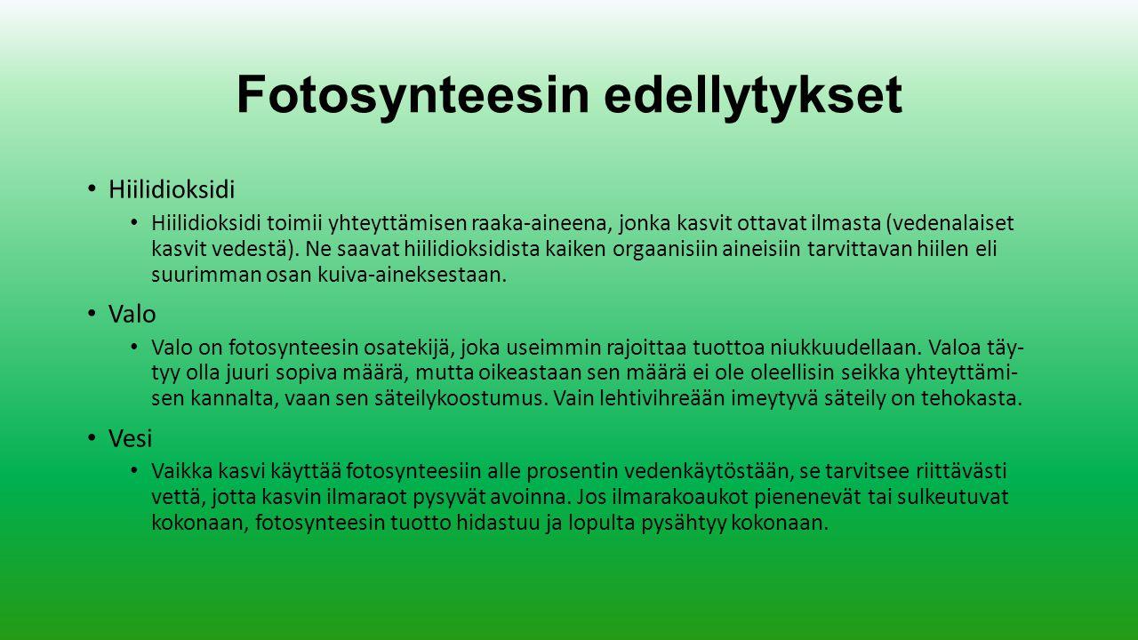 Fotosynteesin edellytykset