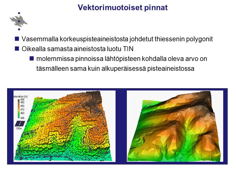 Vektorimuotoiset pinnat