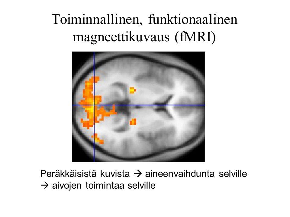 Toiminnallinen, funktionaalinen magneettikuvaus (fMRI)