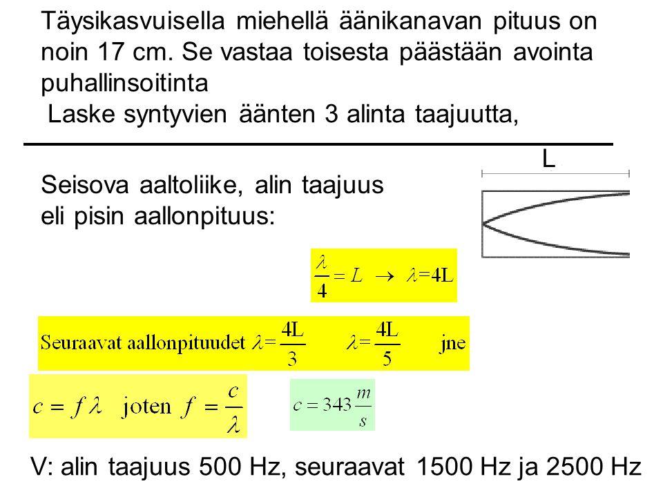 Täysikasvuisella miehellä äänikanavan pituus on noin 17 cm