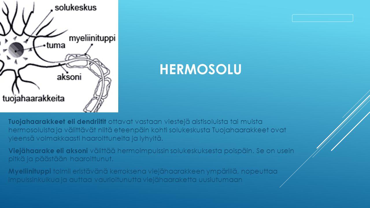 Hermosolu