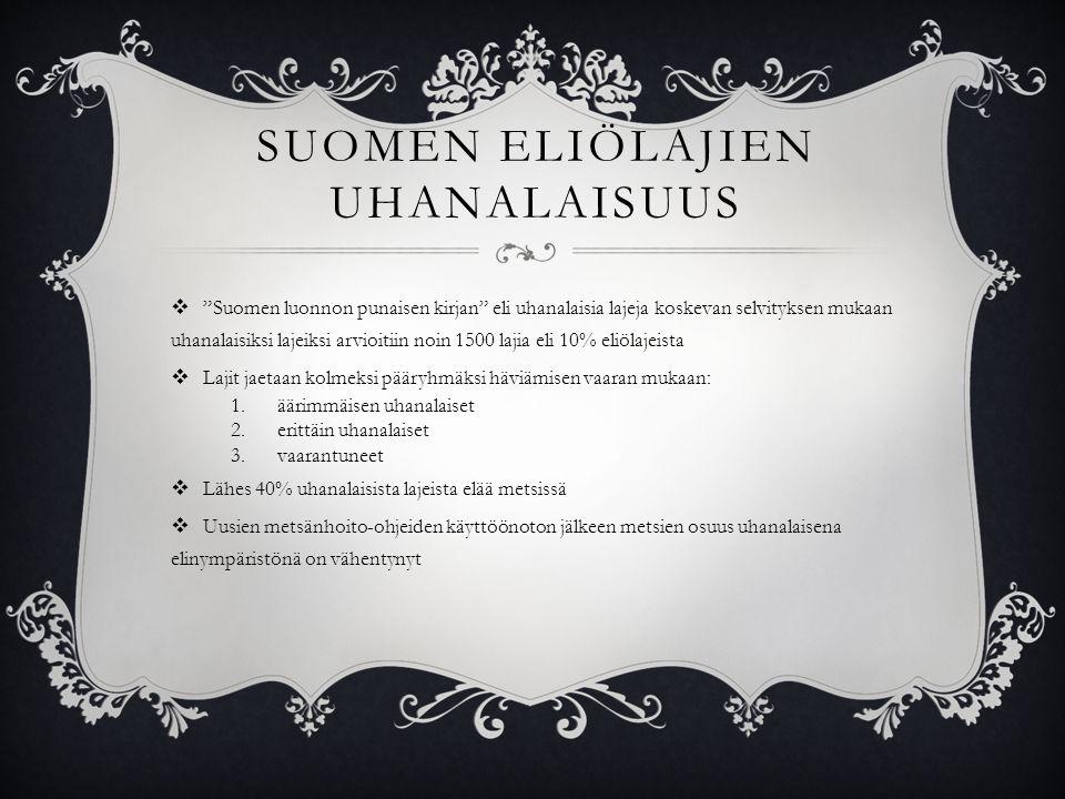 Suomen eliölajien uhanalaisuus