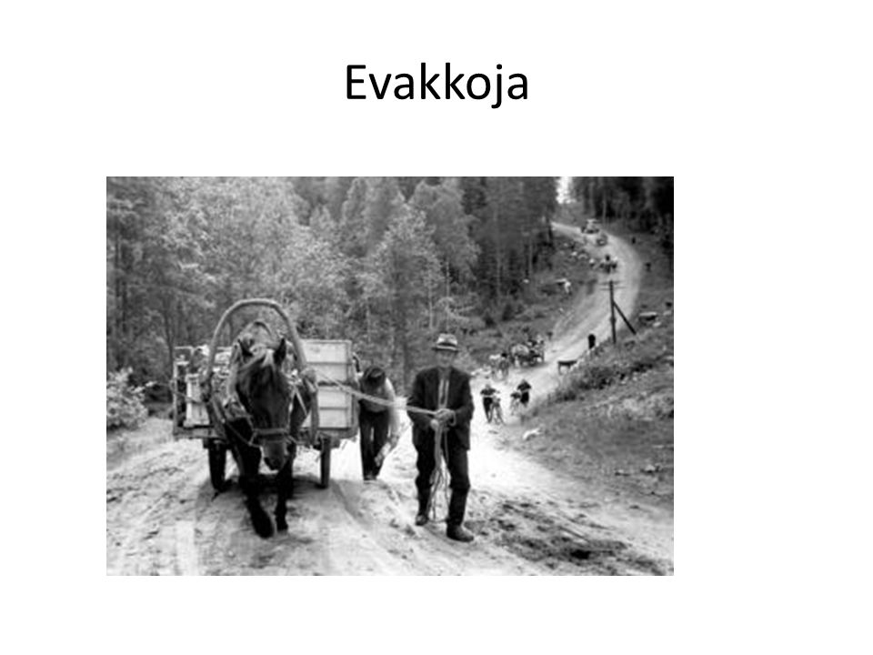 Evakkoja