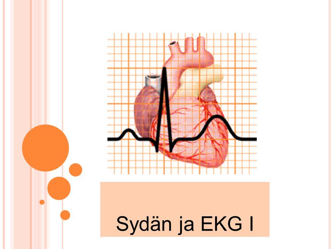 Sydän ja EKG I