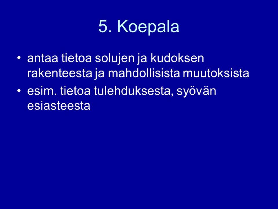 5. Koepala antaa tietoa solujen ja kudoksen rakenteesta ja mahdollisista muutoksista.