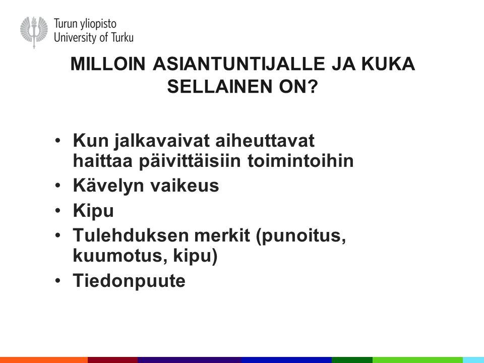 MILLOIN ASIANTUNTIJALLE JA KUKA SELLAINEN ON