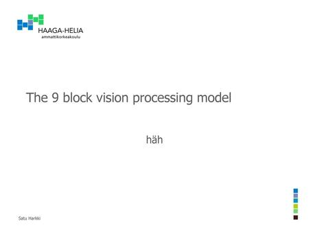 The 9 block vision processing model