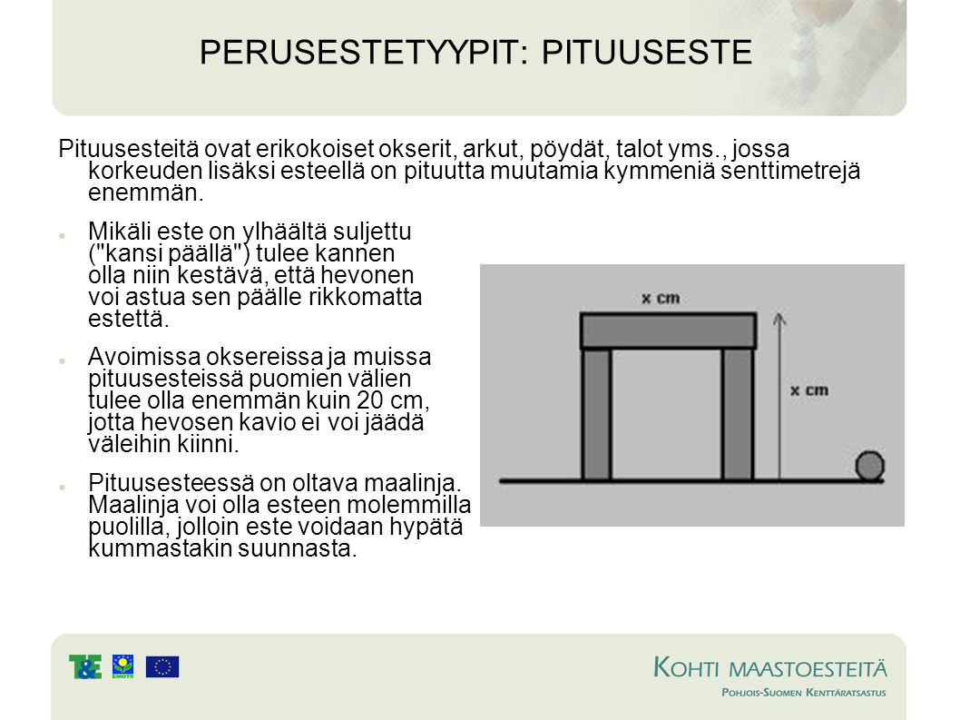 PERUSESTETYYPIT: PITUUSESTE