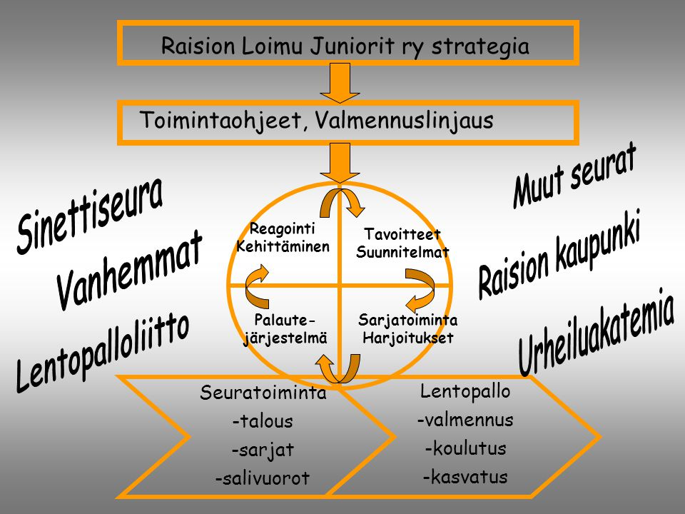 Raision Loimu Juniorit ry strategia