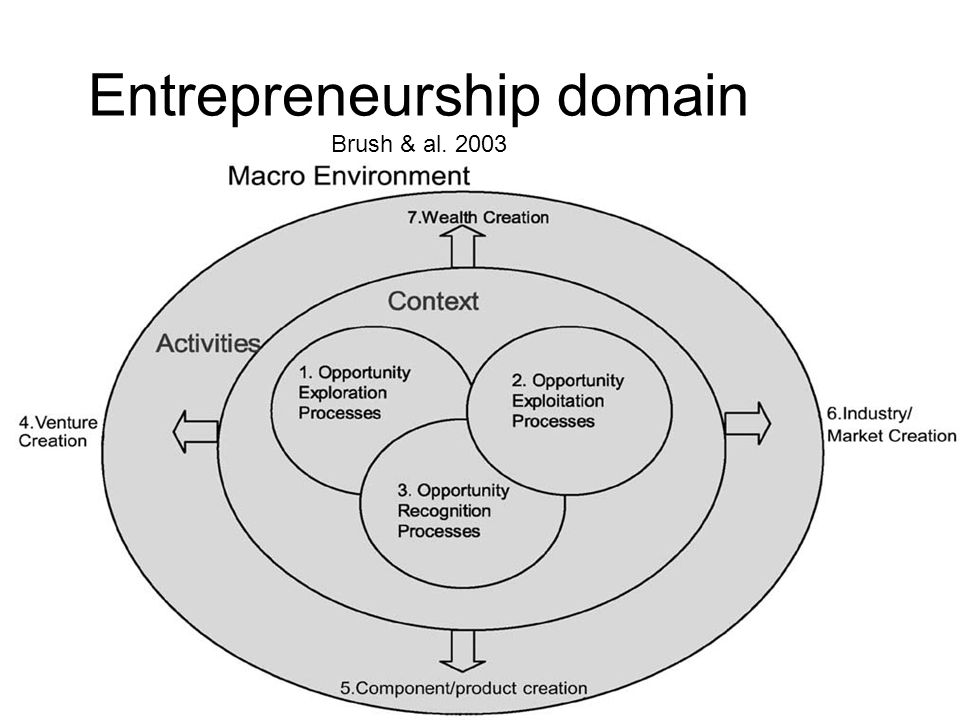 Entrepreneurship domain Brush & al. 2003