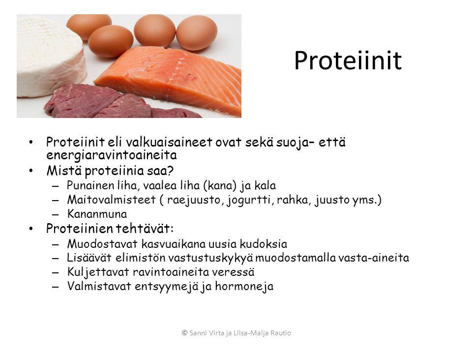 mistä saa proteiinia